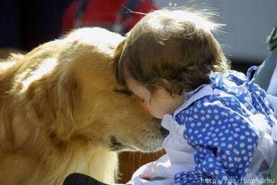 Los bebés que conviven con perros o gatos padecen menos enfermedades